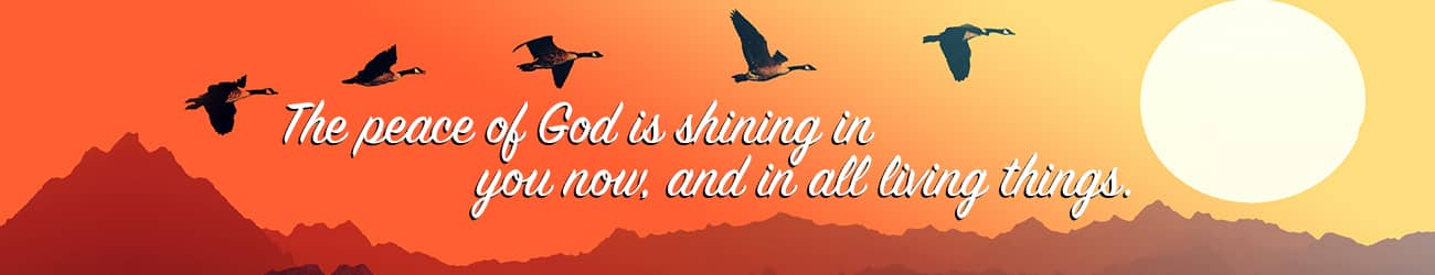The peace of god is shining in you now, and in all living things.